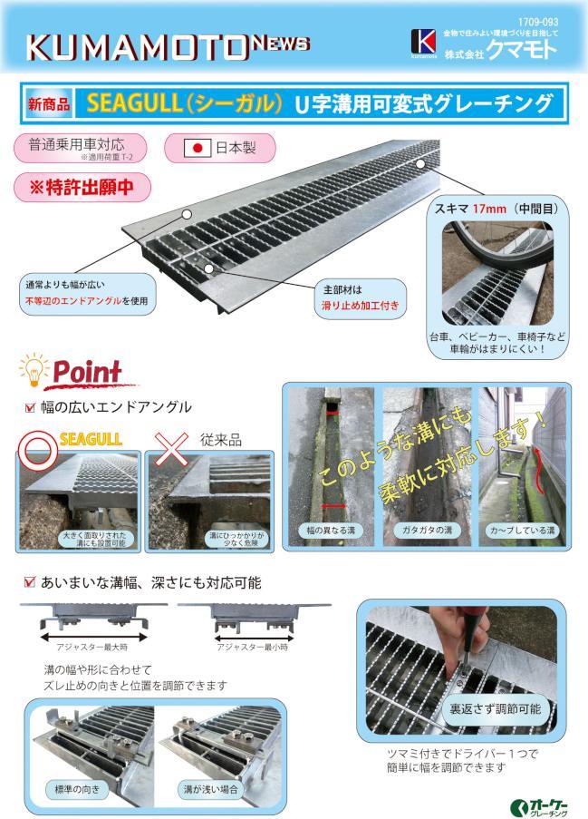 1709-093_KUMAMOTO_NEWS_SEAGULLomote.jpg